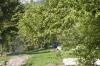 An einen Baum gebundene Martenizi